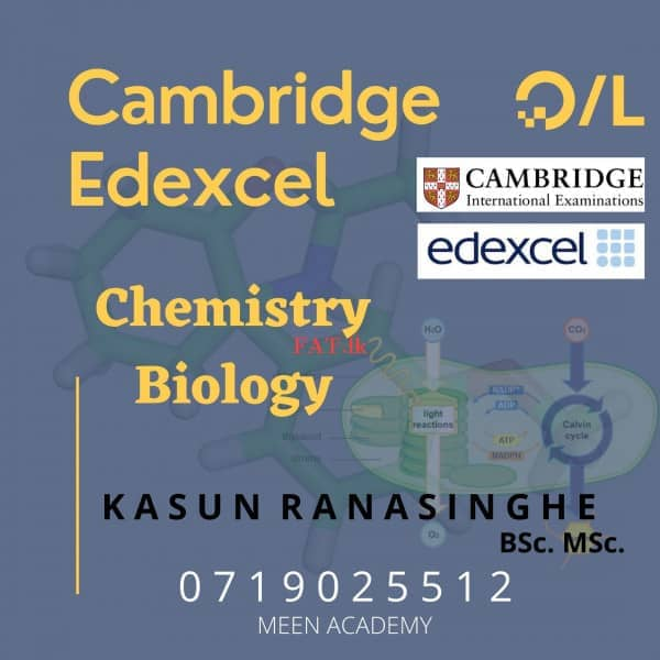 London Syllabus Biology, Chemistry A/L and O/L English Medium - Online or Home visitmt1