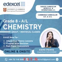 Online / In Class Math and Chemistry Tutoring