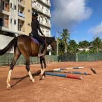 Premadasa Riding School