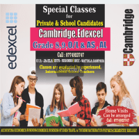 Profile Mathematics Classes from Grade 1 to 11 National /Cambridge / Ed excel (Home visit / Online / Group)